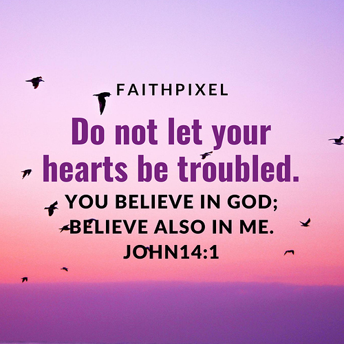Do not let your hearts be troubled.