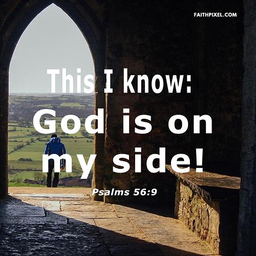 Psalms 56-9